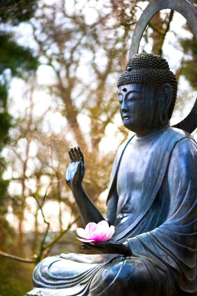 Buddha Wait